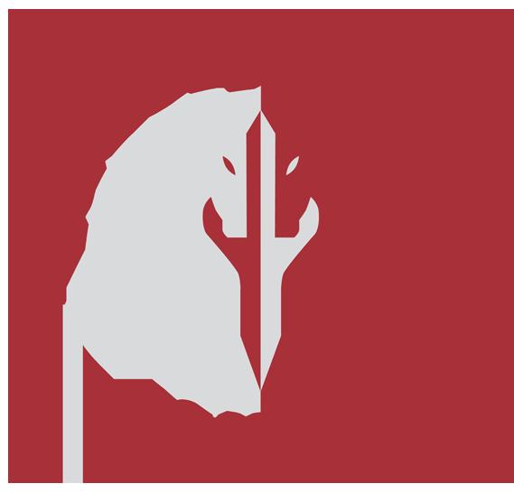 Knight Race